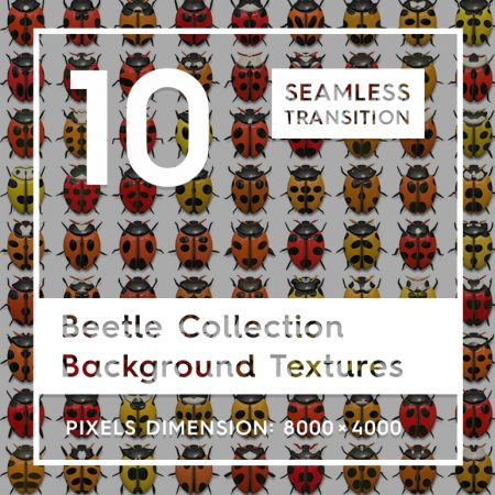 10 Beetle Collection Backgrounds