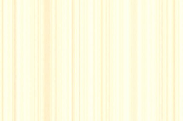 15 Light Wood Background Textures Preview Set