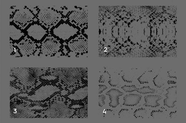 20 Snake Leather Texture Overlays Header 1