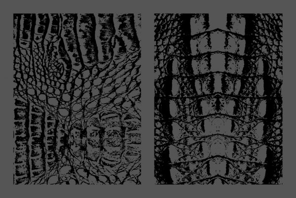 Crocodile Leather Texture Overlays Preview Set 3
