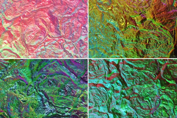 Chameleon Rock Texture Background Preview Set 1