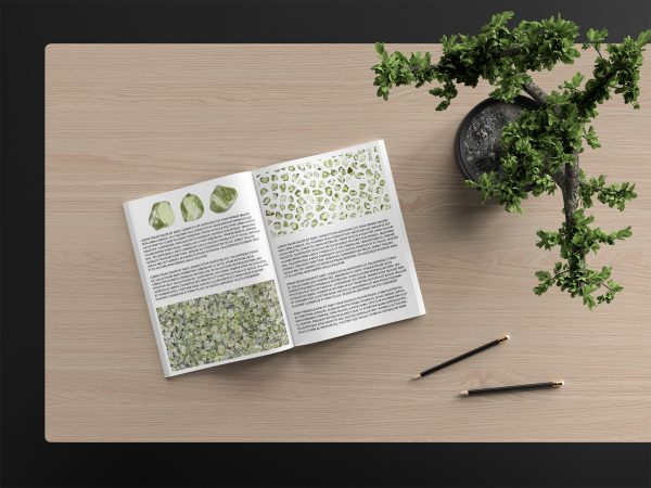 Olivine Background Textures Modern Magazine Article Illustrations Preview