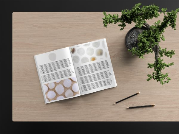 Tridacna Background Textures Modern Magazine Article Illustrations Preview