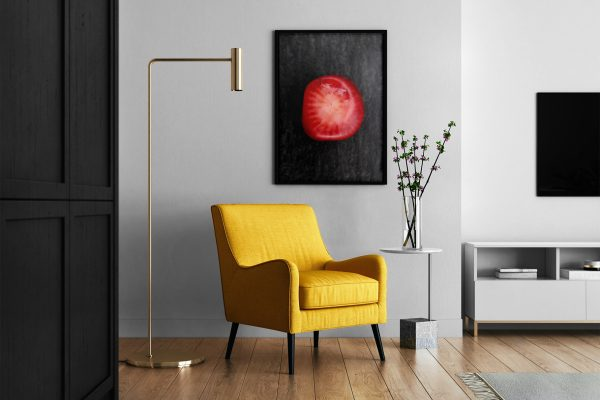 Entryway Red Coral Background Textures Modern Poster Preview