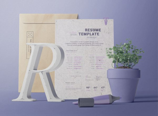 Decorative Paper Background Textures Rezume Paper and Folder Preview
