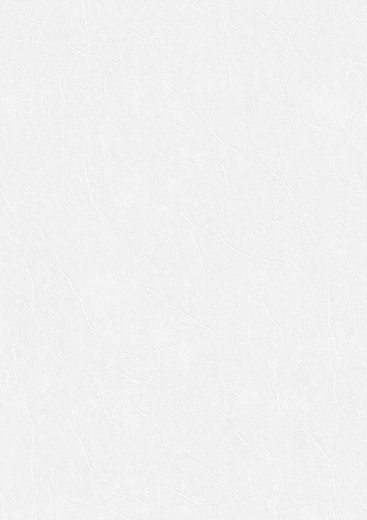 White Paper Texture - Fine Leather