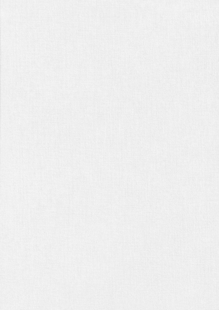 White Paper Texture - Fine Silkweave