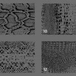 20 Snake Leather Texture Overlays Header 3
