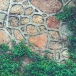 Rocky cobblestones wall texture with green plants. Stone background.