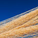 Nylon fishnet texture on the clear sky. Nautical marine background. Macro closeup.