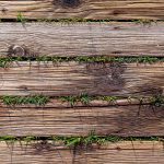Wood planks with grass texture. Wooden beach way. Wooden boards background. Horizontal direction.