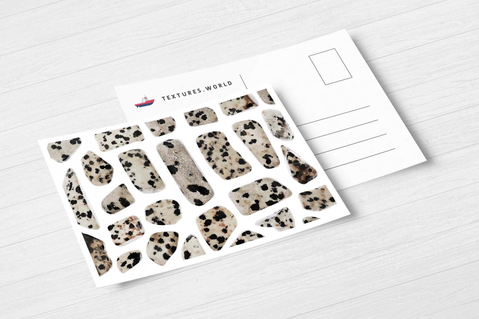 Postcard Dalmatian Jasper Background Textures Modern Poster Preview