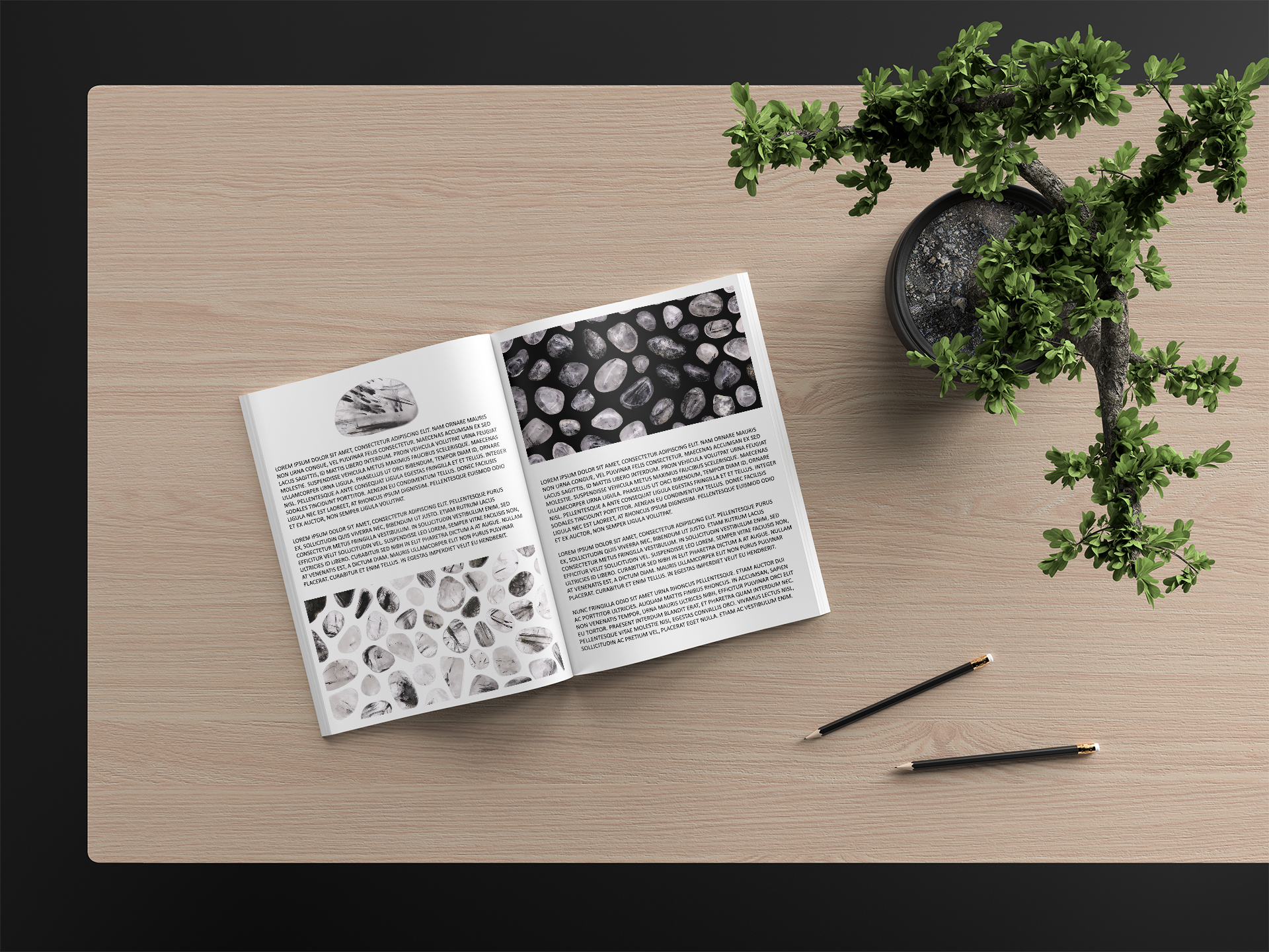 Tourmalinated Quartz Background Textures Modern Magazine Article Illustrations Preview