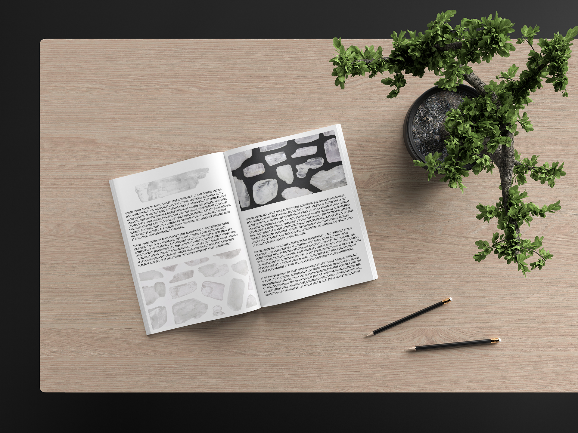 Clear Kunzite Background Textures Modern Magazine Article Illustrations Preview